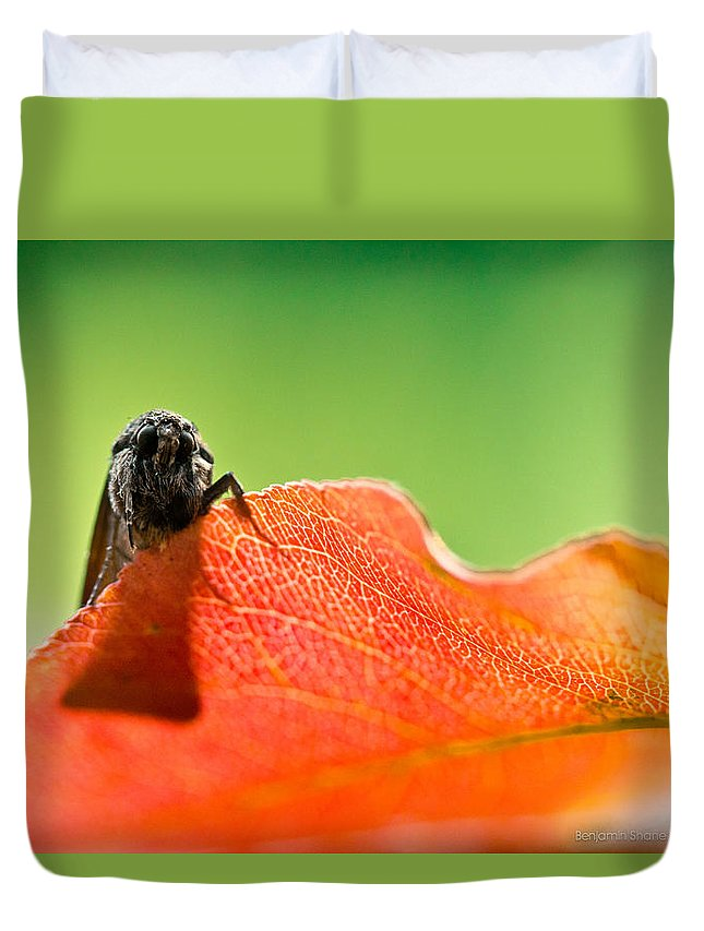 Moth Duvet Cover featuring the photograph My Leaf by Shane Holsclaw