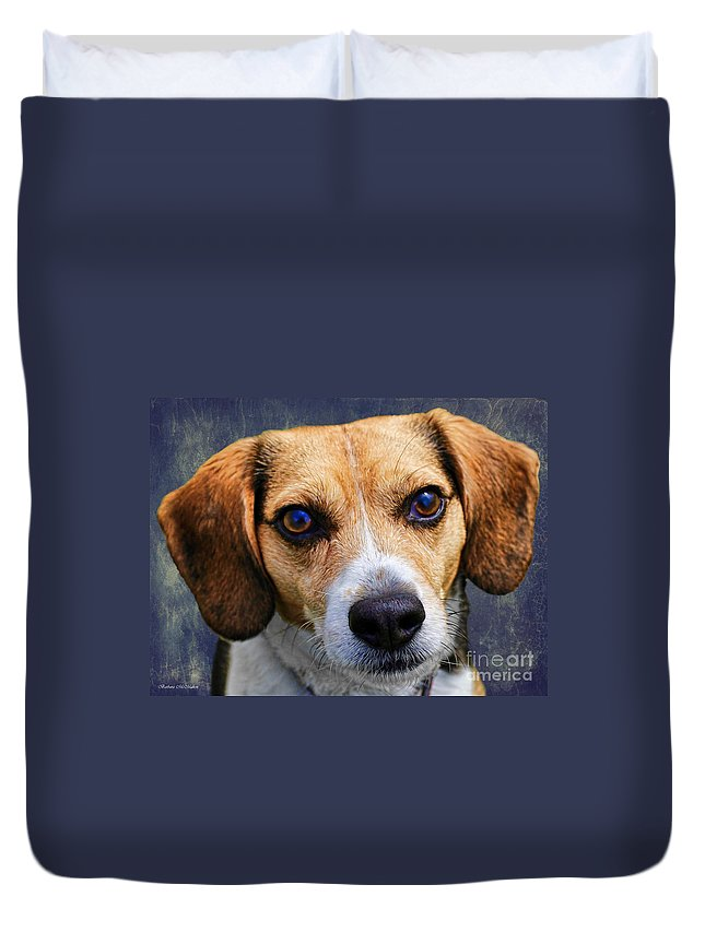 Beagle Duvet Cover featuring the photograph My Name Is Moose by Barbara McMahon