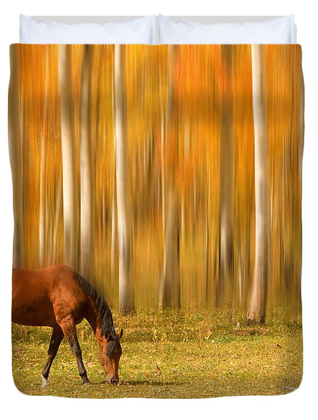 Horse Duvet Cover featuring the photograph Mystic Autumn Grazing Horse by James BO Insogna
