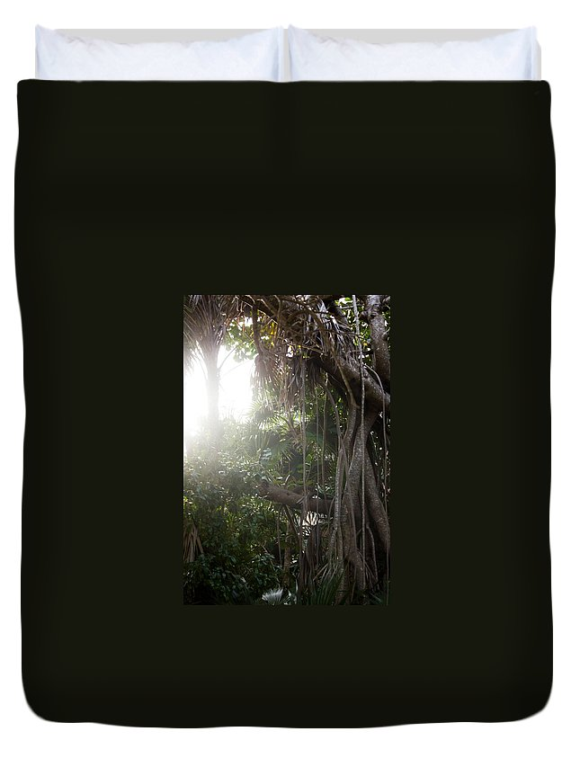 Jungle Duvet Cover featuring the photograph Mystic Jungle by Kathleen Odenthal