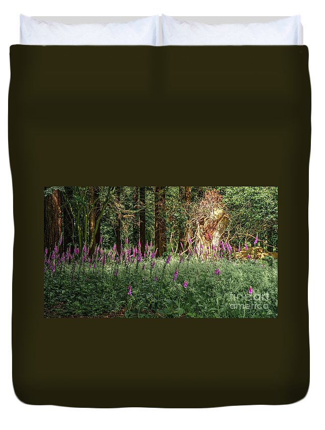 Mystic Duvet Cover featuring the photograph Mystical Woods by Mickey At Rawshutterbug