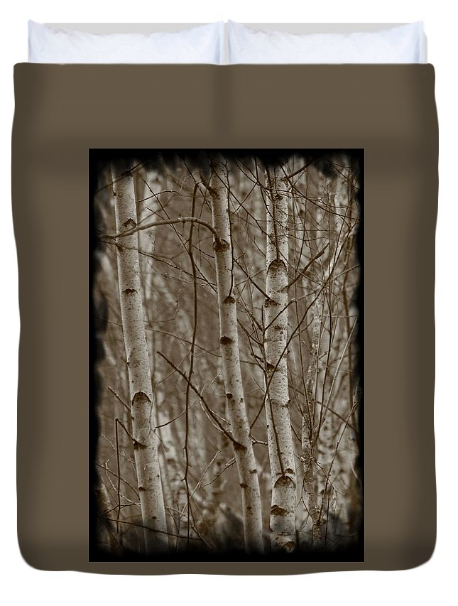Trees Duvet Cover featuring the photograph Naked Trees by Jes Fritze