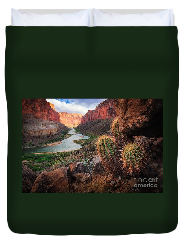 America Duvet Cover featuring the photograph Nankoweap Cactus by Inge Johnsson