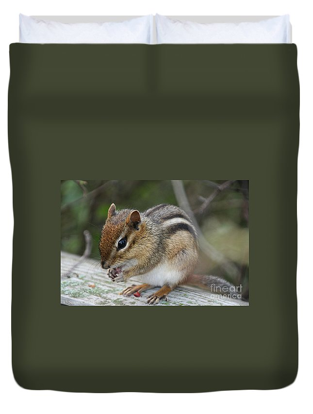 Outdoors Duvet Cover featuring the photograph Naturally Cute by Susan Herber