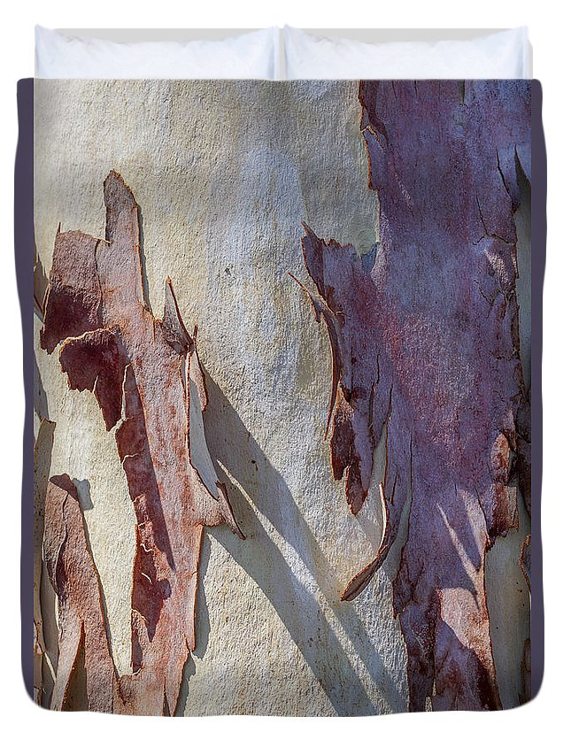 Sycamore Tree Duvet Cover featuring the photograph Natures Abstract by Ernie Echols