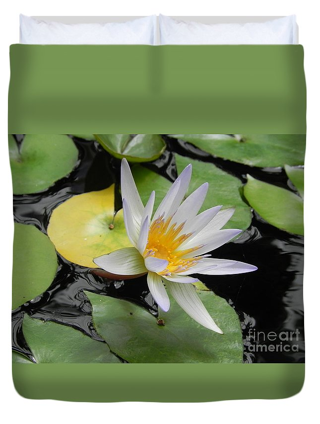Photography Duvet Cover featuring the photograph Natures Beauty by Chrisann Ellis