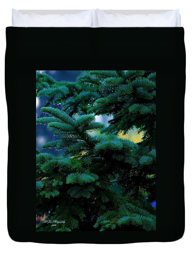 Christmas Tree Duvet Cover featuring the photograph Nature's Christmas Tree by Jeanette C Landstrom