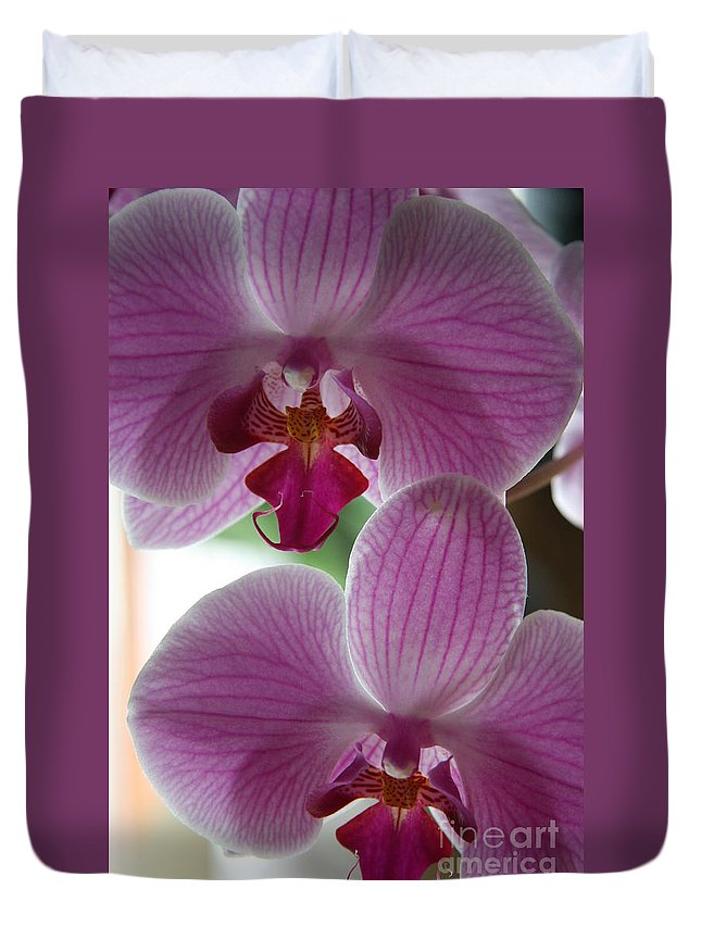 Orchid Duvet Cover featuring the photograph Neat Faces by Christiane Schulze Art And Photography
