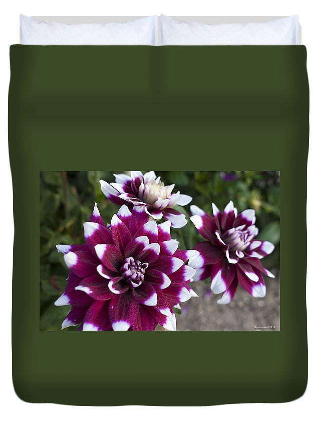 Garden Duvet Cover featuring the photograph Neighbors Garden Treasures by Miguel Winterpacht
