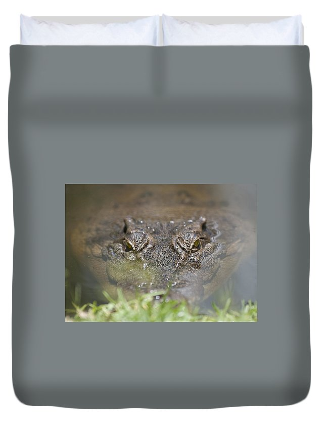 Australia Duvet Cover featuring the photograph Never Smile At A Crocodile by Rodney Appleby