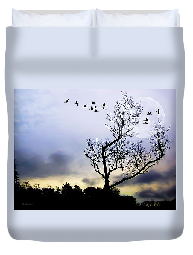 2d Duvet Cover featuring the photograph New Dawn by Brian Wallace