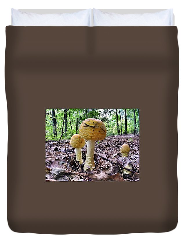 Mushroom Duvet Cover featuring the photograph New England Fly Agaric by Erik Kaplan