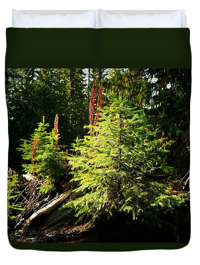 Forest Duvet Cover featuring the photograph New Forest by Jeff Swan