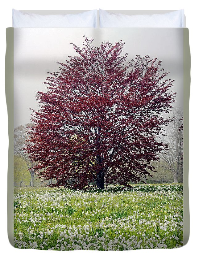 Tree Duvet Cover featuring the photograph New Growth by Joe Geraci