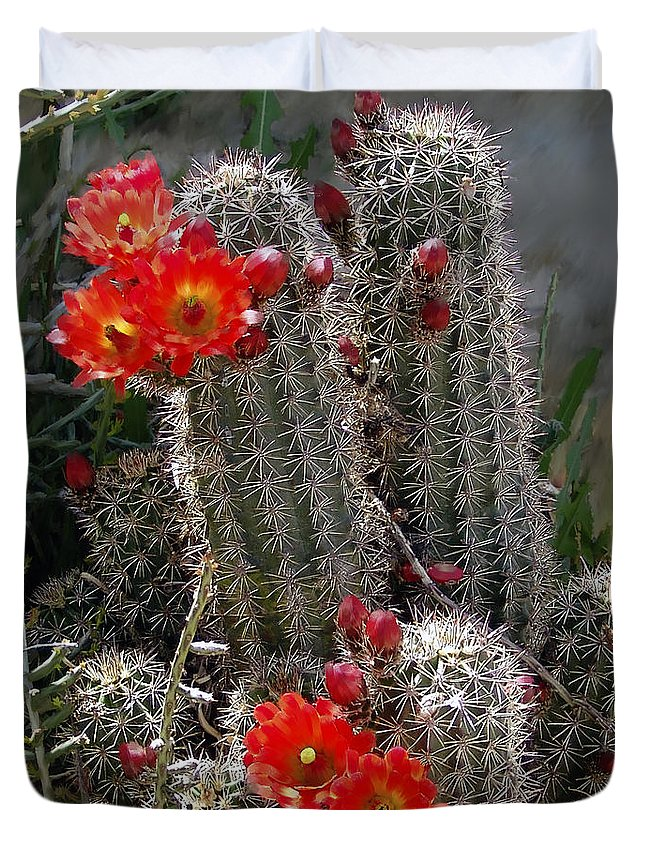 Cactus Duvet Cover featuring the photograph New Mexico Cactus by Kurt Van Wagner