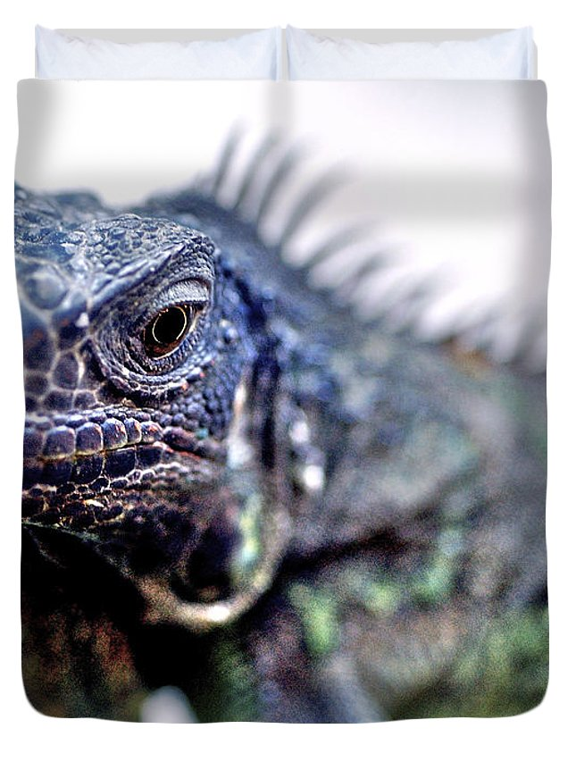 Reptile Duvet Cover featuring the photograph Close Up Beady Eyed Iguana by Toula Mavridou-Messer