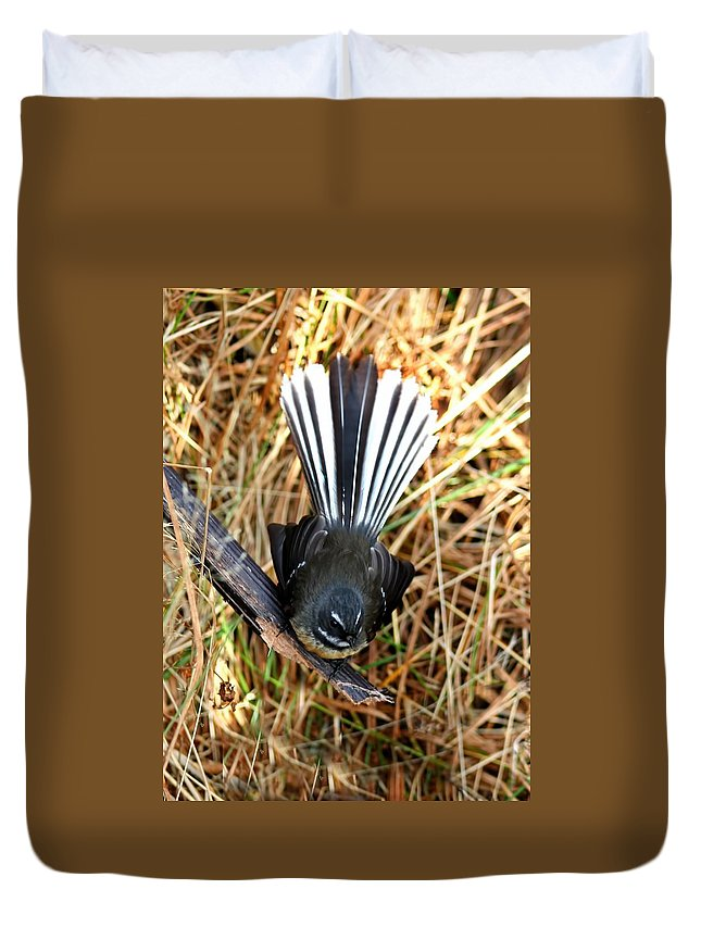 Fantail Duvet Cover featuring the photograph New Zealand Fantail by Amanda Stadther