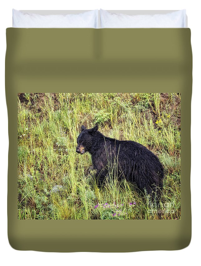 Bear Duvet Cover featuring the photograph Nibbling A Flower by Claudia Kuhn