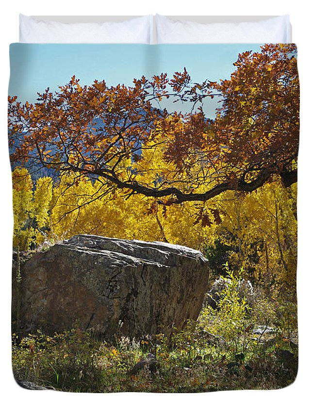Colorado Photographs Duvet Cover featuring the photograph Nice Setting For A Rock by Gary Benson