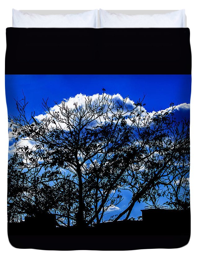 Landscape Duvet Cover featuring the photograph Night Blues by Theresa Cummings