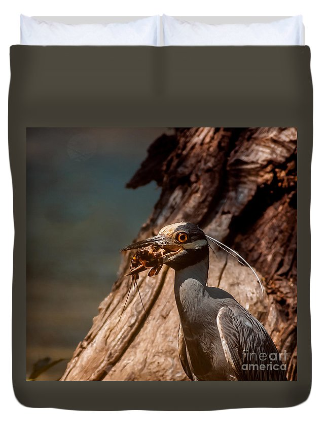Animal Duvet Cover featuring the photograph Night Heron And Crawdaddy by Robert Frederick