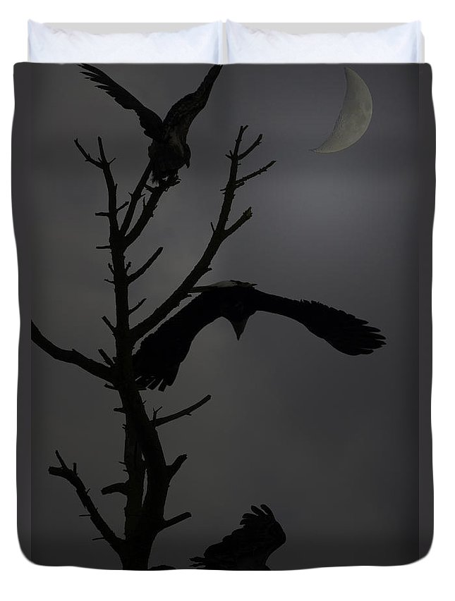 Bald Eagle .crescent Moon Duvet Cover featuring the photograph Night Shift by Rob Mclean