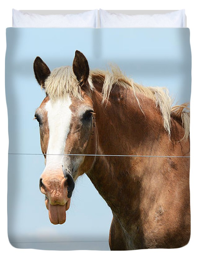 Horse Duvet Cover featuring the photograph No Manners by Cindy Manero