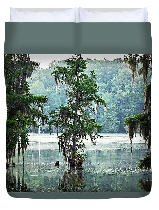 Swamp Duvet Cover featuring the photograph North Florida Cypress Swamp by Rich Leighton