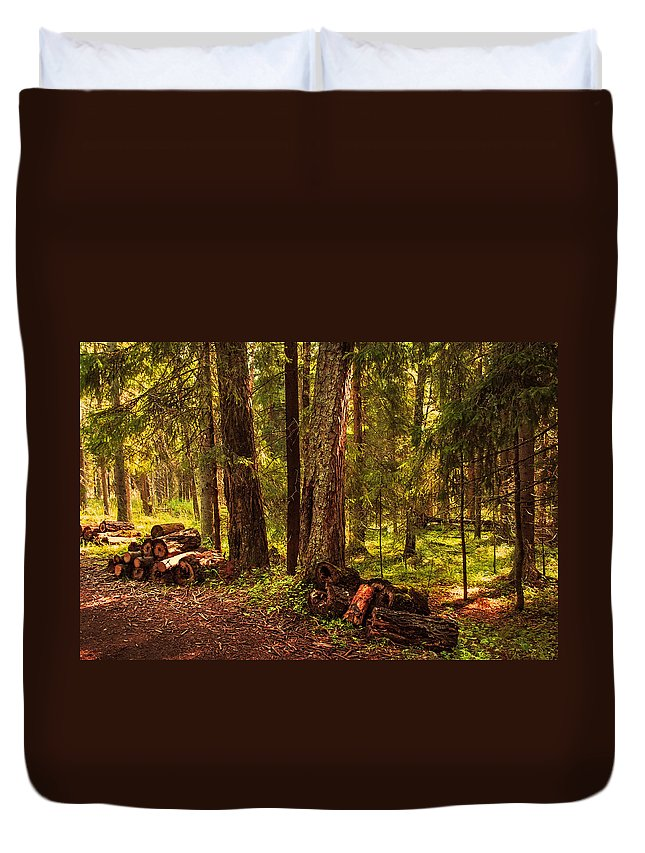 Nature Duvet Cover featuring the photograph Northern Forest by Jenny Rainbow