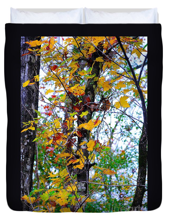Fall Leaves Duvet Cover featuring the photograph November Leaves by Leon Hollins III