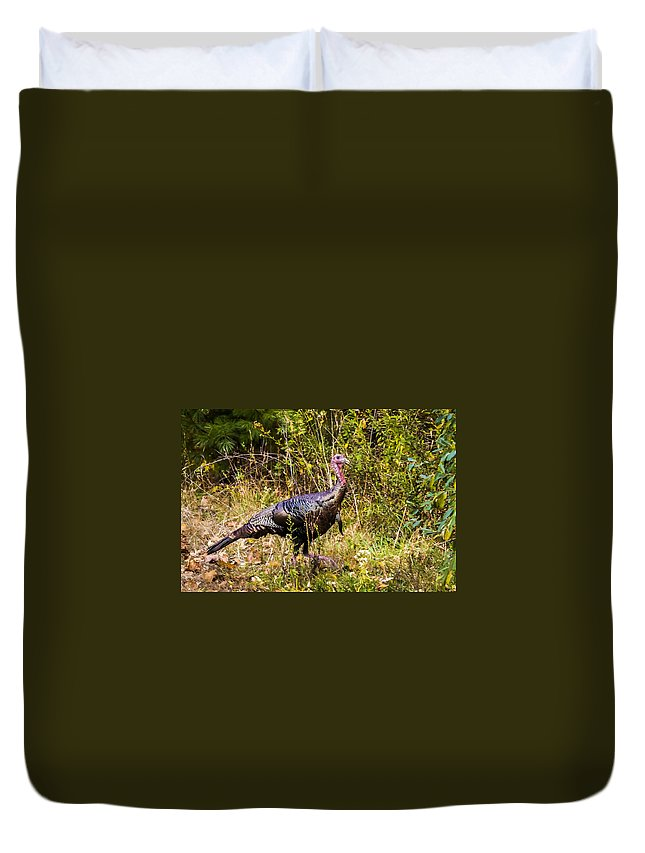 Birds Duvet Cover featuring the photograph November Oh My by Albert Seger
