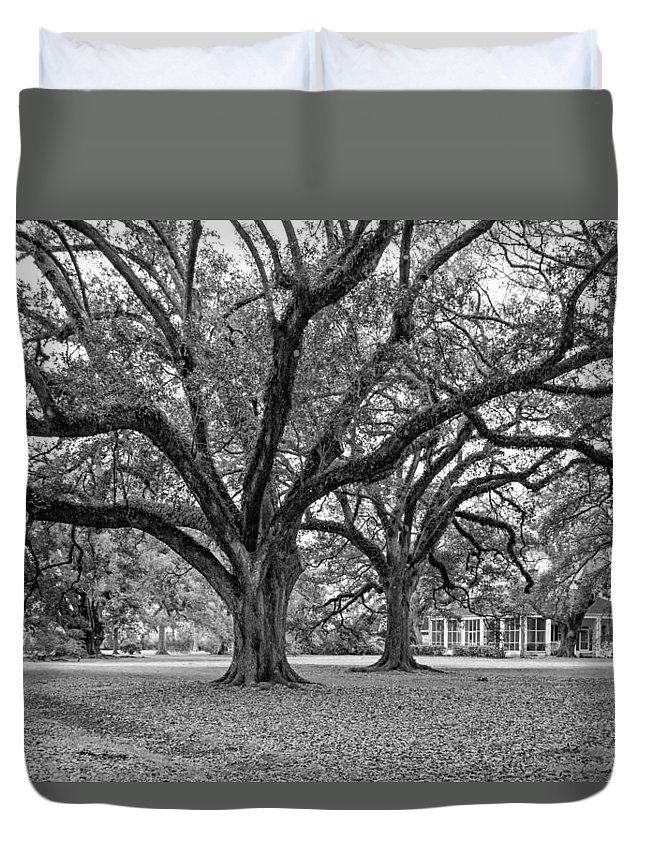 Oak Alley Plantation Duvet Cover featuring the photograph Oak Alley Grounds Bw by Steve Harrington