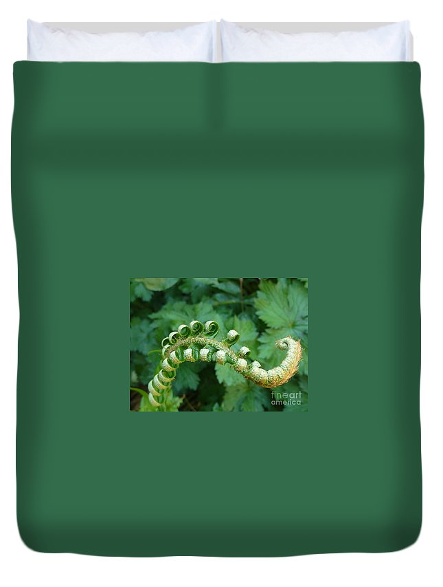Fern Duvet Cover featuring the photograph Octo-fern by Rain Shine