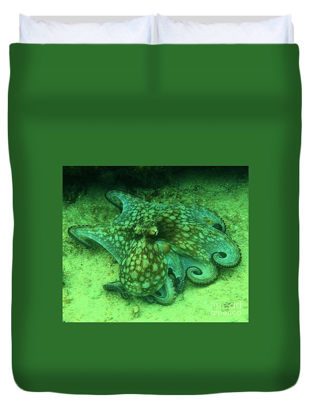 Common Octopus Duvet Cover featuring the photograph Octopus In The Sand by Adam Jewell