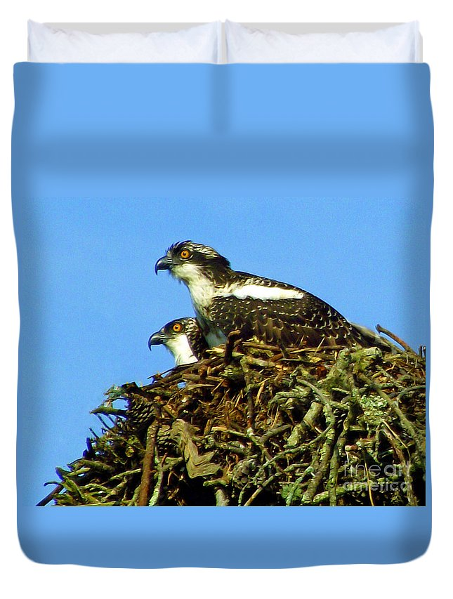 Osprey Duvet Cover featuring the photograph Of One Mind by CapeScapes Fine Art Photography