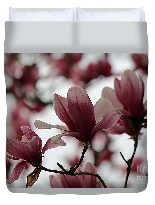 Flowering Tree Duvet Cover featuring the photograph Oh Magnolia by Jamie Smith