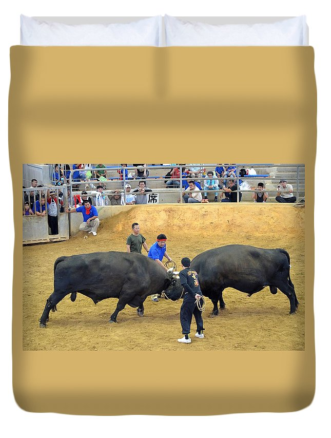 Ryukyuan Duvet Cover featuring the photograph Okinawan Culture Bull Versus Bull Okinawan Bullfighting by Jeff at JSJ Photography