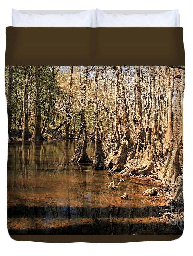 Congaree National Park Duvet Cover featuring the photograph Old Growth by Adam Jewell