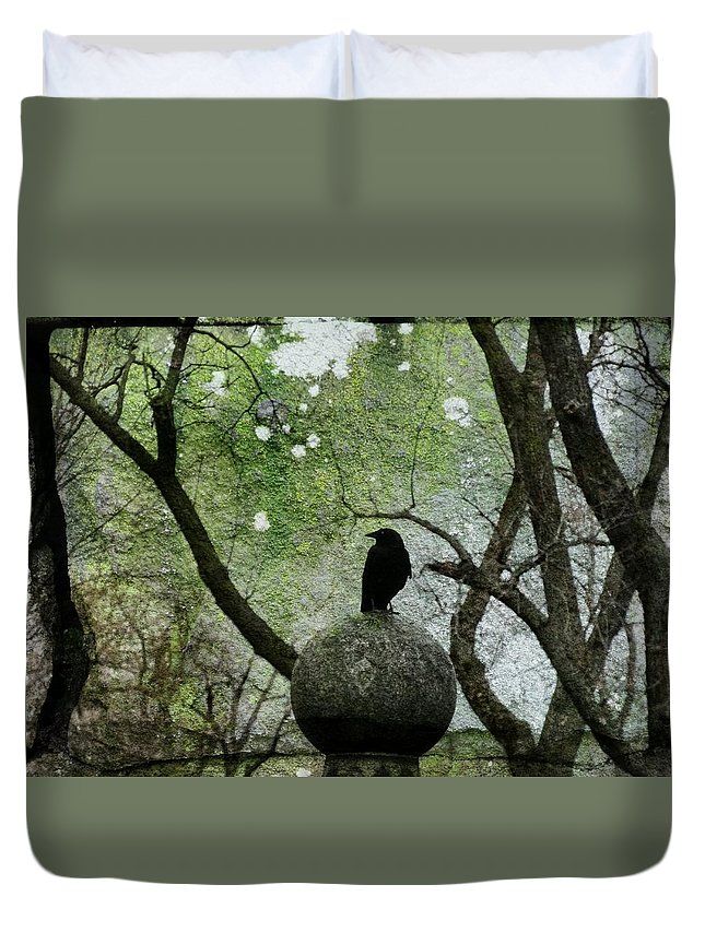 Graveyard Crow Duvet Cover featuring the photograph Old Moss by Gothicrow Images