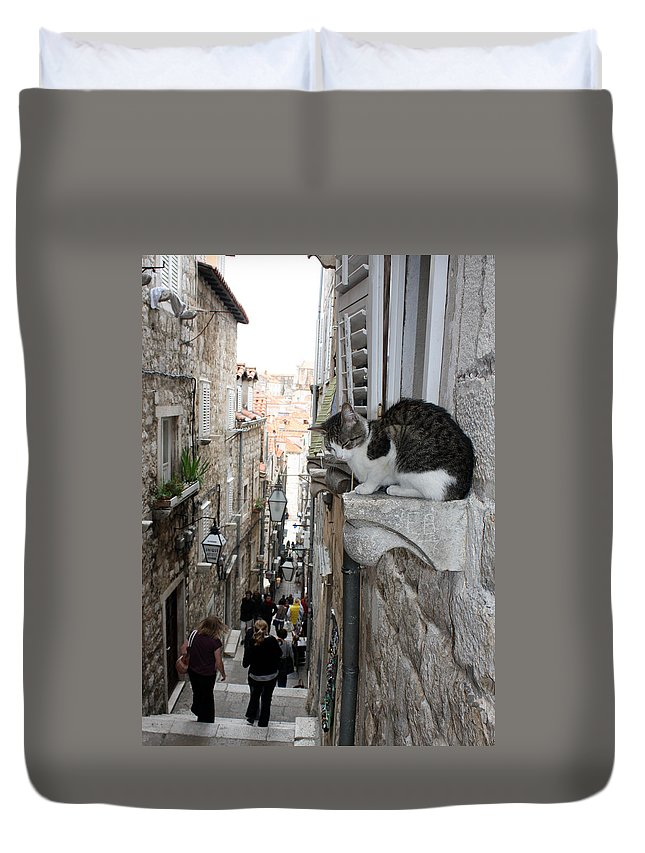 Old Town Duvet Cover featuring the photograph Old Town Alley Cat by David Nicholls
