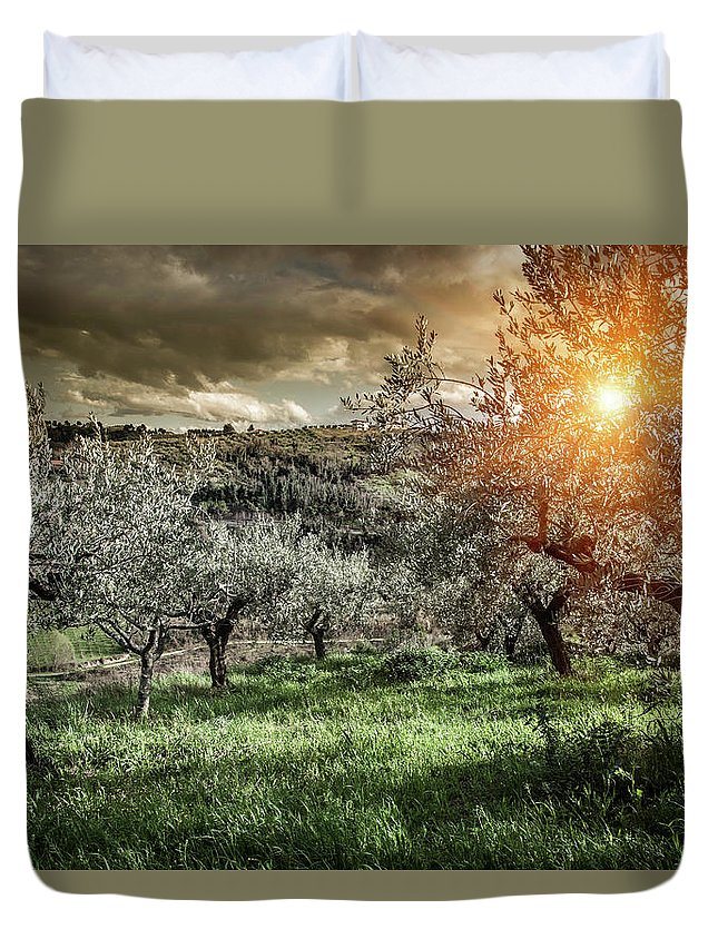 Scenics Duvet Cover featuring the photograph Olive Trees In Chieti, Abruzzo, Italy by Walter Zerla