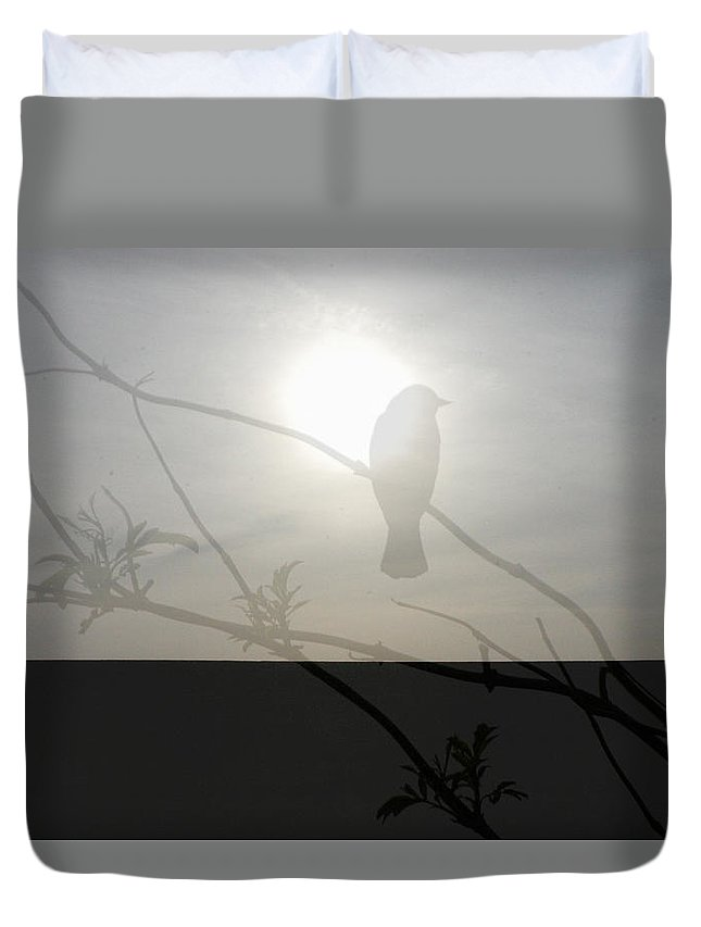 Bird Duvet Cover featuring the photograph On A Limb by Aimee Reutercrona