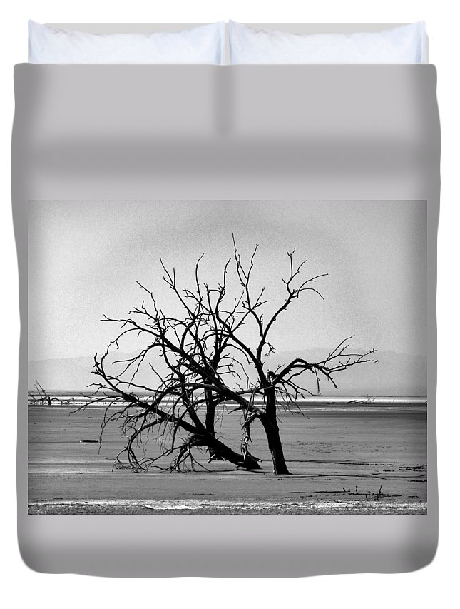 Trees Duvet Cover featuring the photograph On The Flats by Patricia Quandel