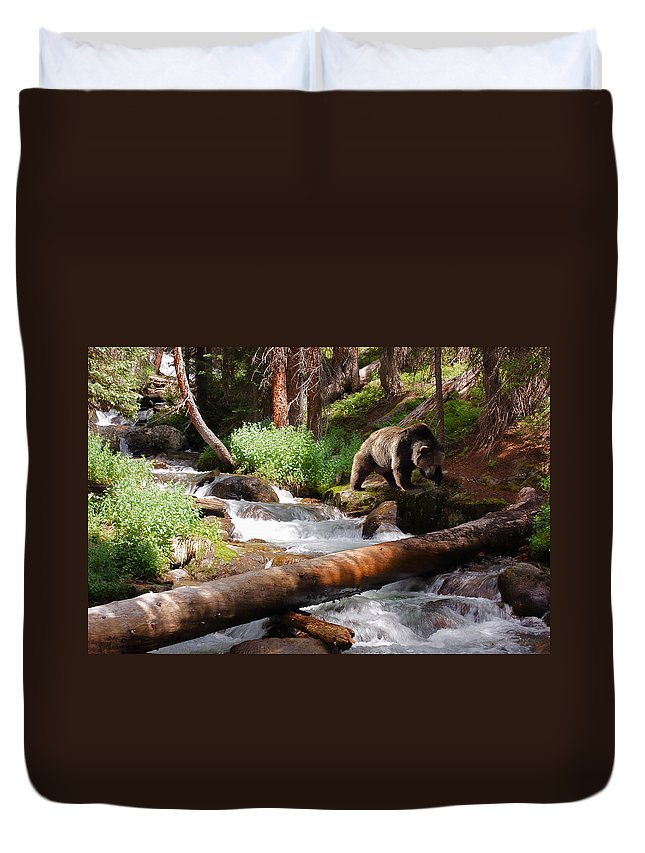 Grizzly Duvet Cover featuring the photograph On The Prowl by Ken Smith