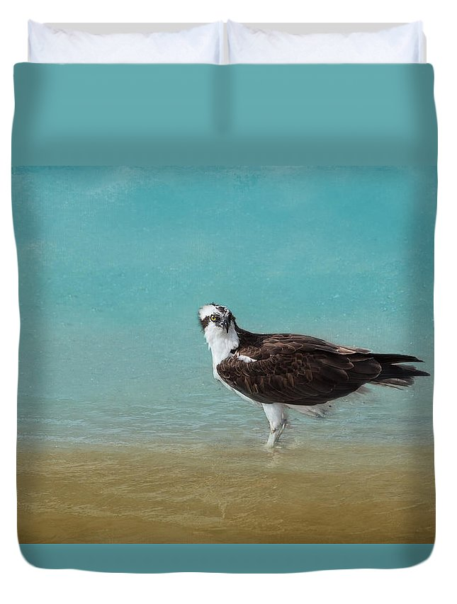 Osprey Duvet Cover featuring the photograph On The Shore - Osprey by Kim Hojnacki