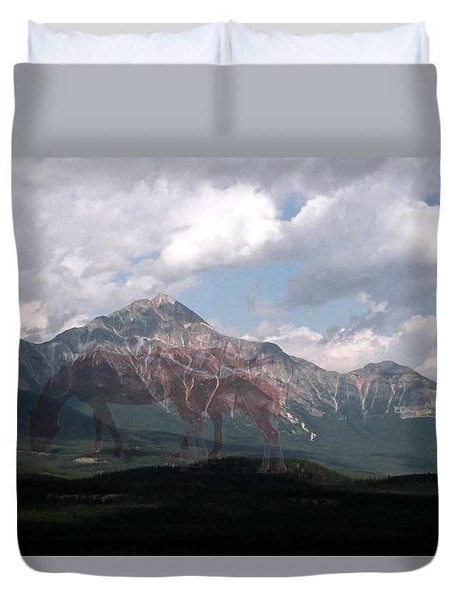 Mountain Mare Colt Horse Sky Clouds Grass Image Mirage Scenery Animal Artwork Mane Tail Quarter Horse Paint Appaloosa Digital Photo Art Weird Picture Imagination Duvet Cover featuring the photograph Once by Andrea Lawrence