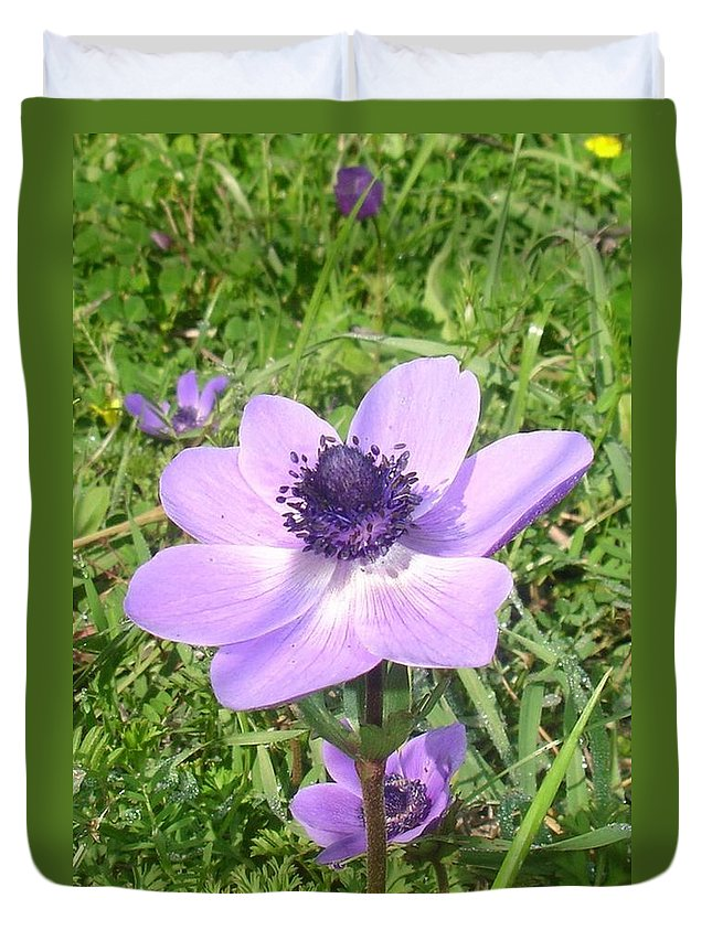 Anemone Coronaria Duvet Cover featuring the photograph One Delicate Pale Lilac Anemone Coronaria Wild Flower by Taiche Acrylic Art