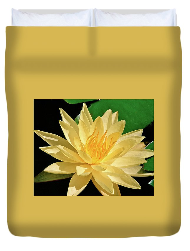 Water Lily Duvet Cover featuring the photograph One Water Lily by Ed Riche