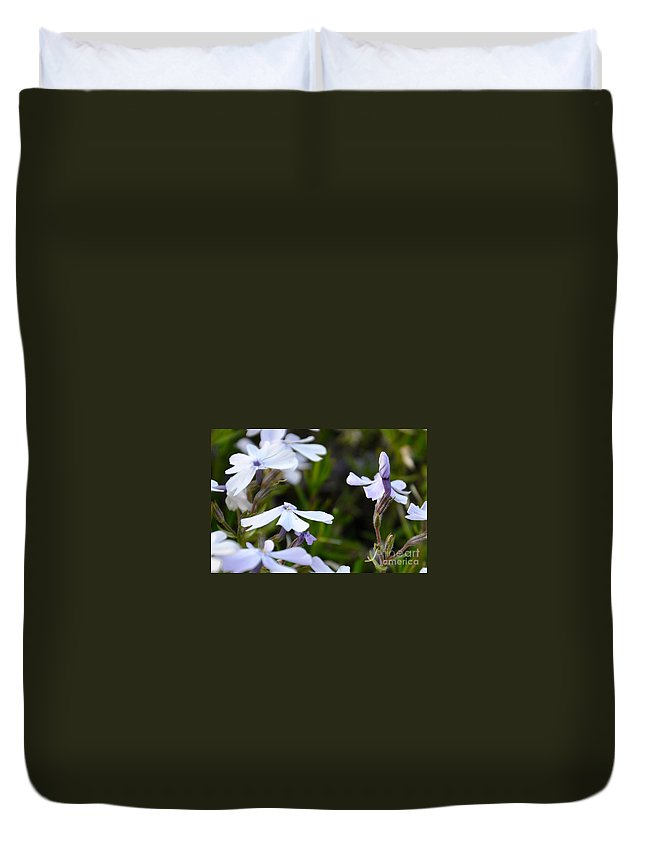 Phlox Duvet Cover featuring the photograph Open And Shut by Christina McKinney