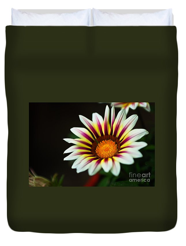 Spring Duvet Cover featuring the photograph Opening Sensation by Syed Aqueel